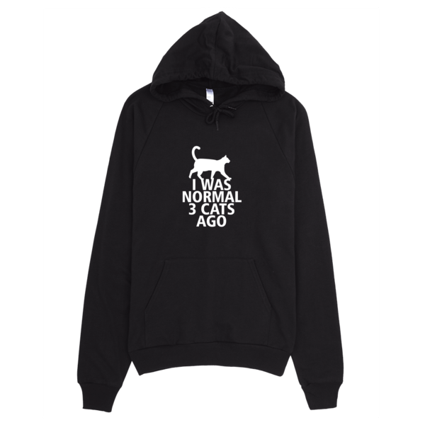 I Was Normal 3 Cats Ago - Funny Cat Hoodie