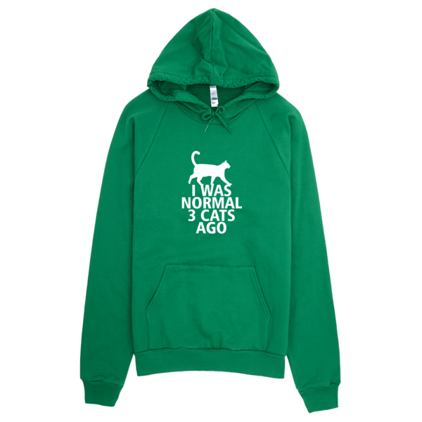 I Was Normal 3 Cats Ago - Funny Cat Printed Graphics Hoodie